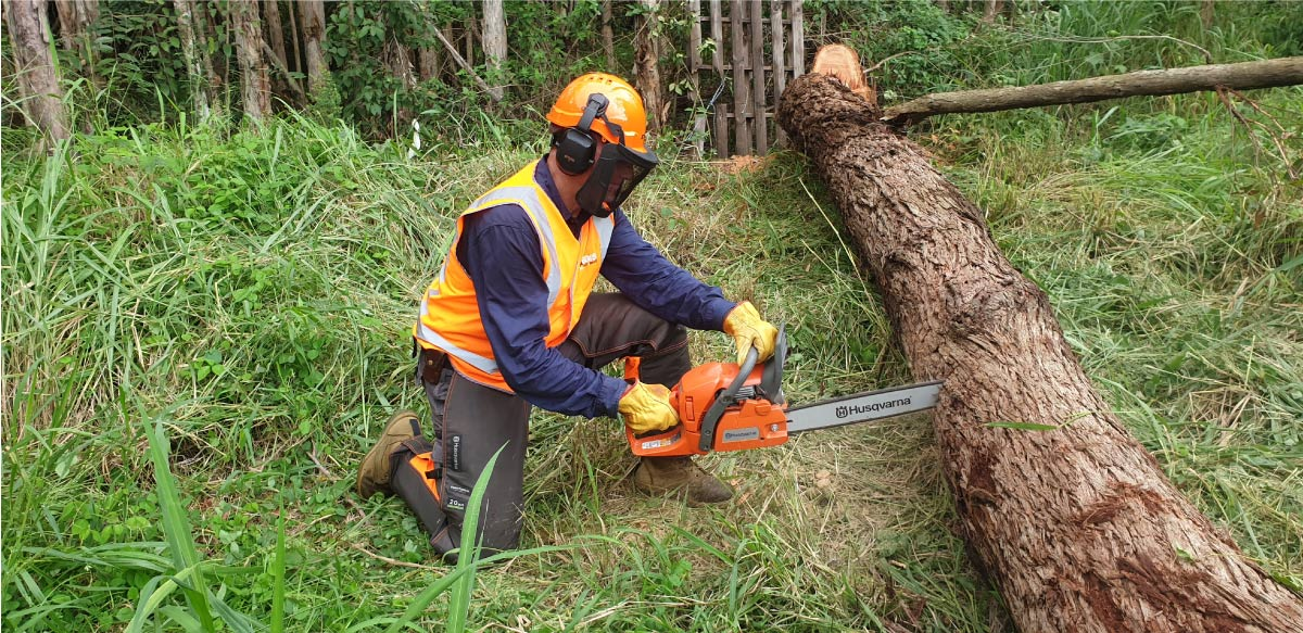 Queensland 4x4 Club Chainsaw Training